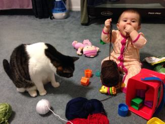 Cats and babies are SUPER helpful..